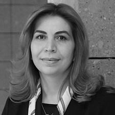 Professor Mané Beglaryan, American University of Armenia, Armenia
