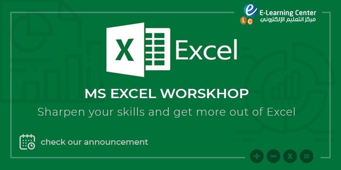 Microsoft Excel Program