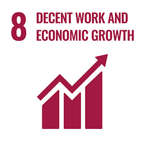 Sustainable Development Goals 5