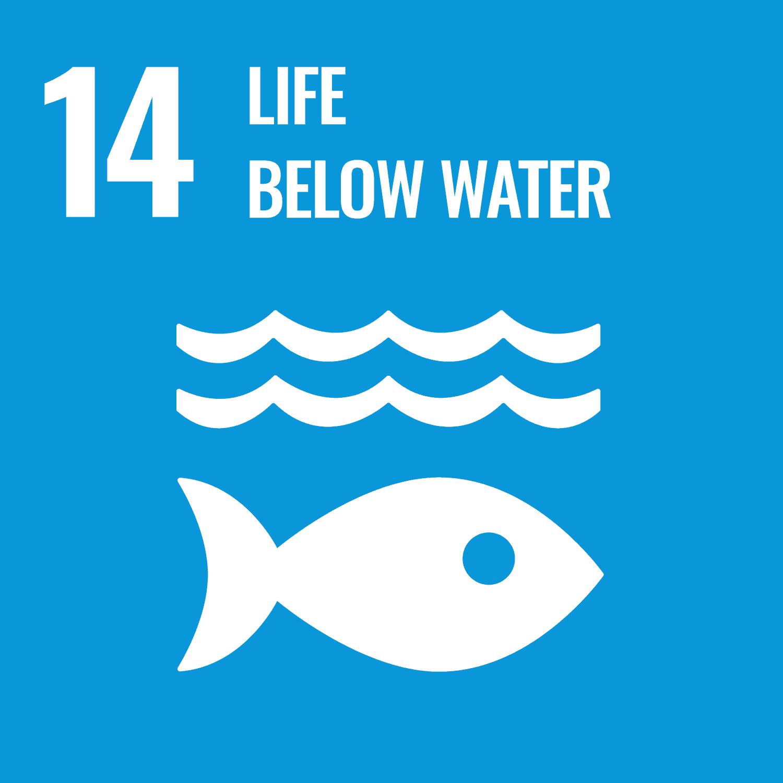 SDG 14